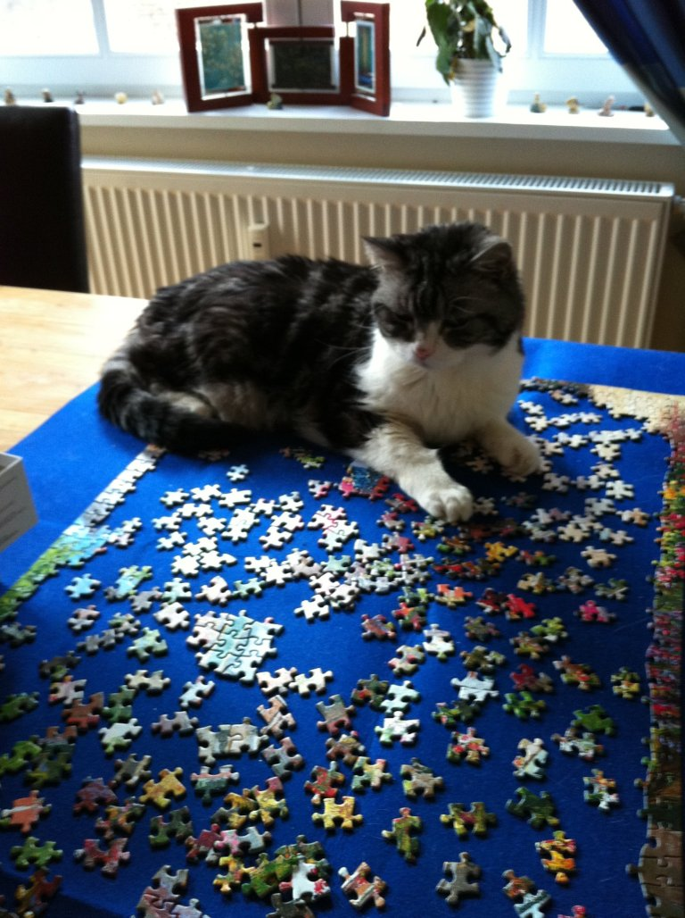 Puzzle Kitty
