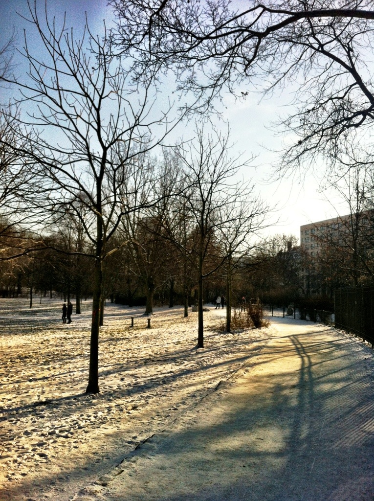 Volkspark Friedrichshain in Winter