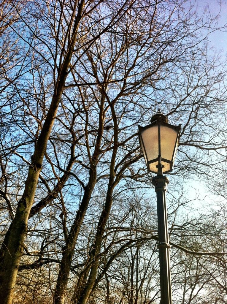 Lamp Post Volkspark Friedrichshain