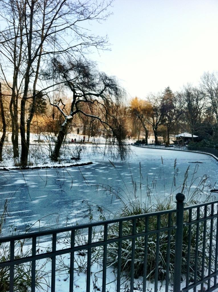 A frozen pond in Volkspark Friedrichshain