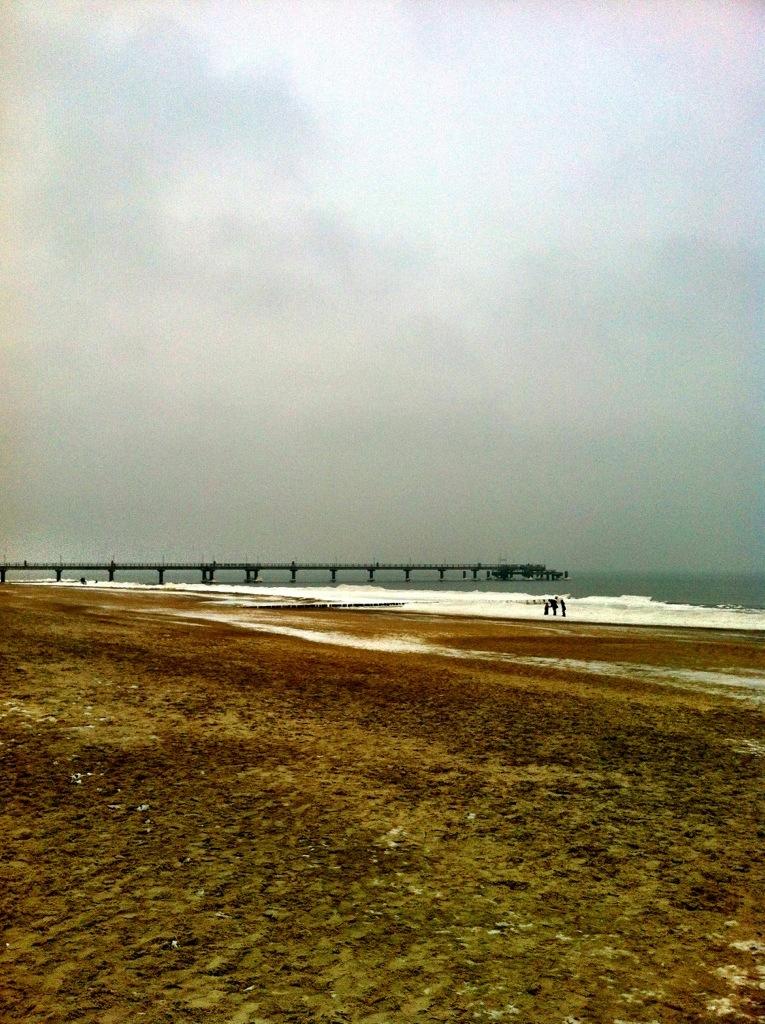 winter beach landscape